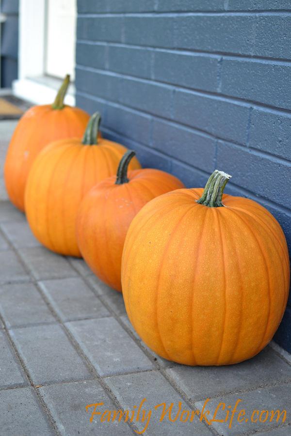 pumpkins copy
